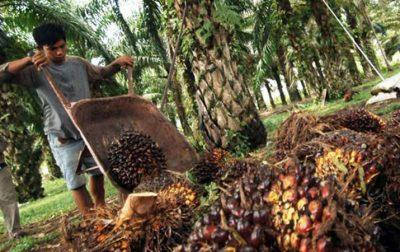 Raperda Riau Jadi Acuan DPRD Kalbar