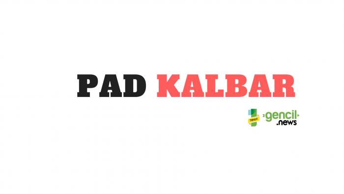 Realisasi PAD Kalbar Capai 19,74 Persen