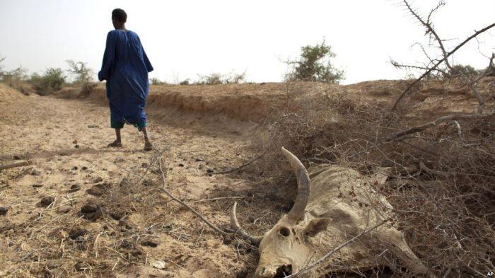PBB Setujui Dana $1 Miliar, Proyek Perubahan Iklim di Negara Miskin