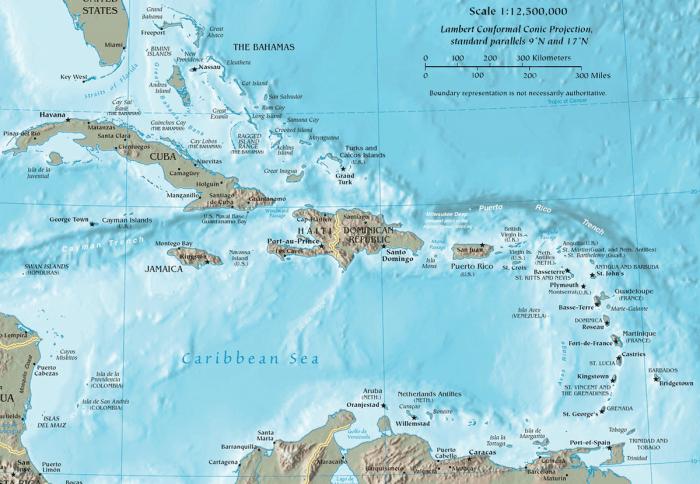 Ilmuwan Temukan Spesies Baru di Perairan Karibia
