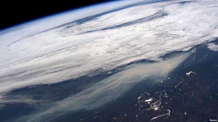 Hutan sering disebut sebagai paru-paru planet karena memproduksi banyak oksigen.