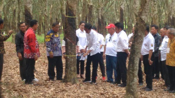 Jokowi Instruksikan Penggunaan Aspal Karet di Seluruh Jalan Nasional