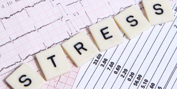 Klinik Peredam Stres Merambah Jakarta