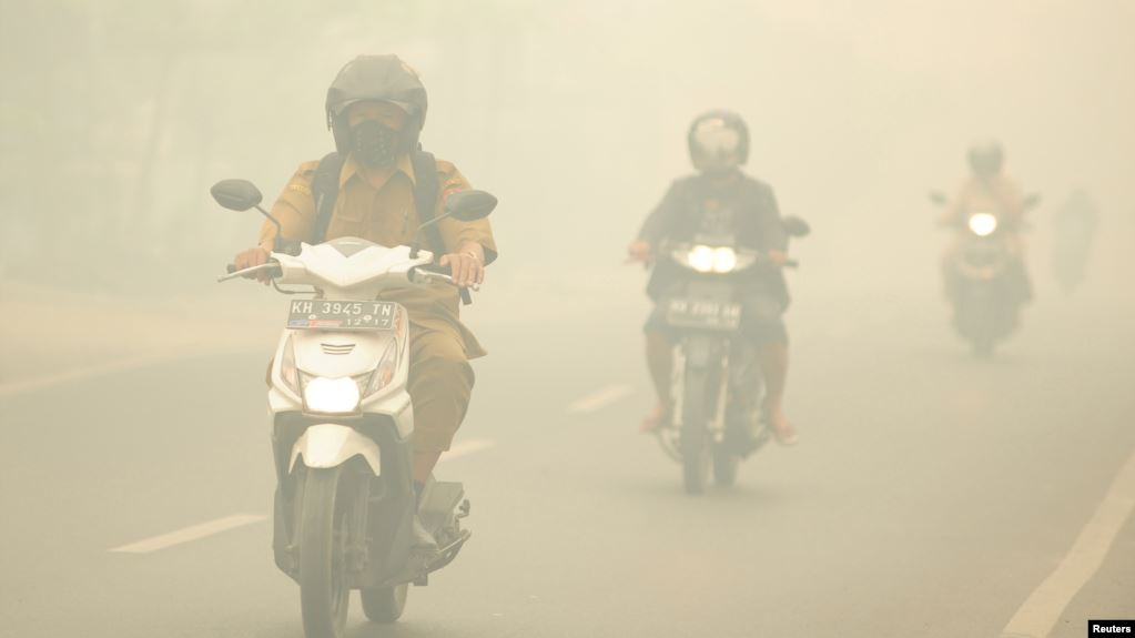 MA Tolak Kasasi Presiden dalam Kasus Kebakaran Hutan