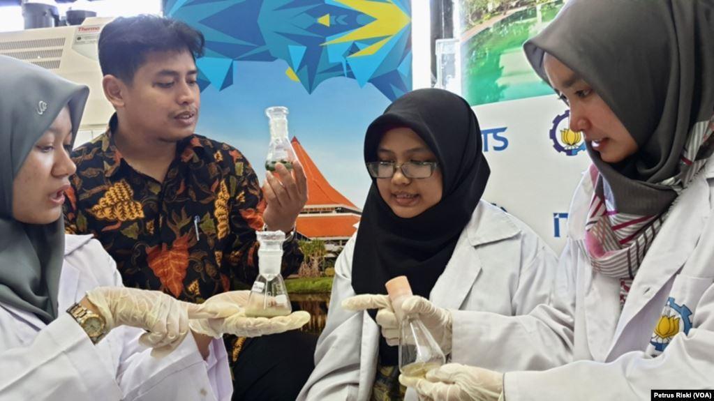 Mahasiswa ITS Gunakan Jamur Untuk Mengurai Sampah Plastik