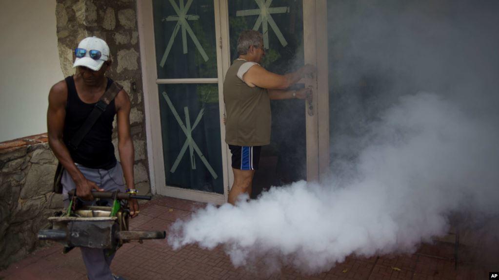 PBB akan Mulai Upaya Sterilisasi Nyamuk