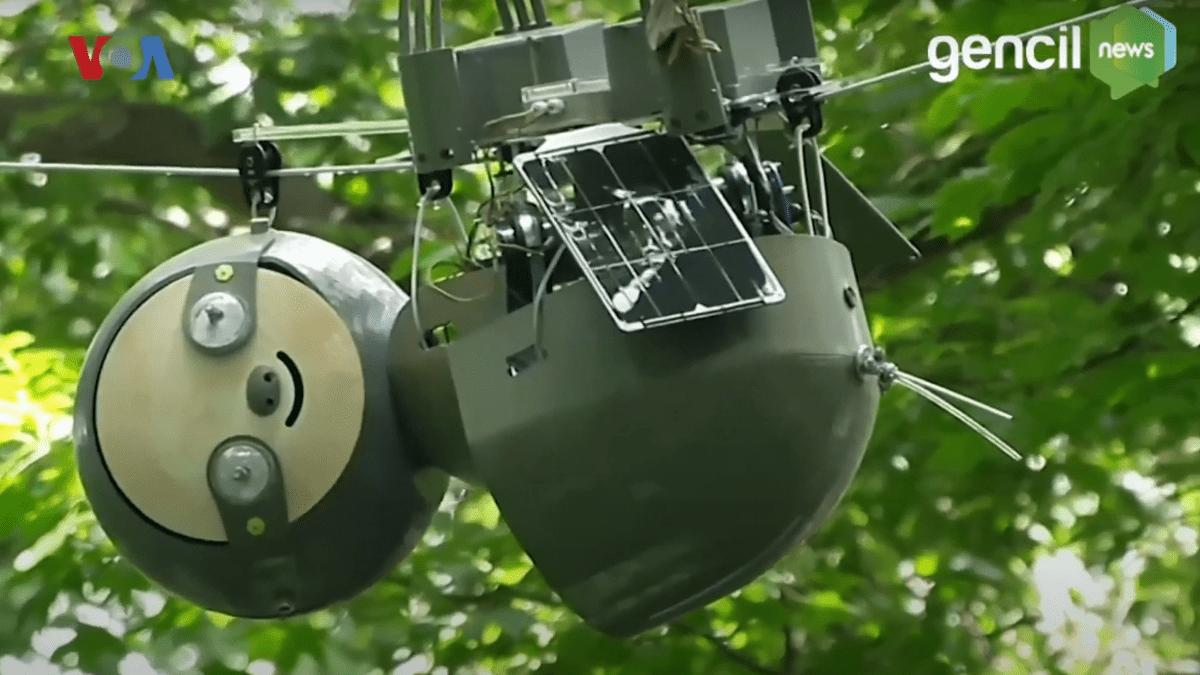 Slothbot, Robot Kungkang Yang Membantu Konservasi