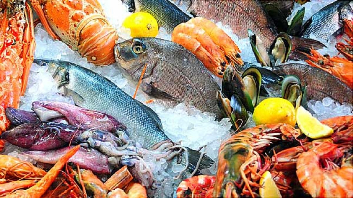Kandungan Gizi dan Nutrisi dari Makanan Laut
