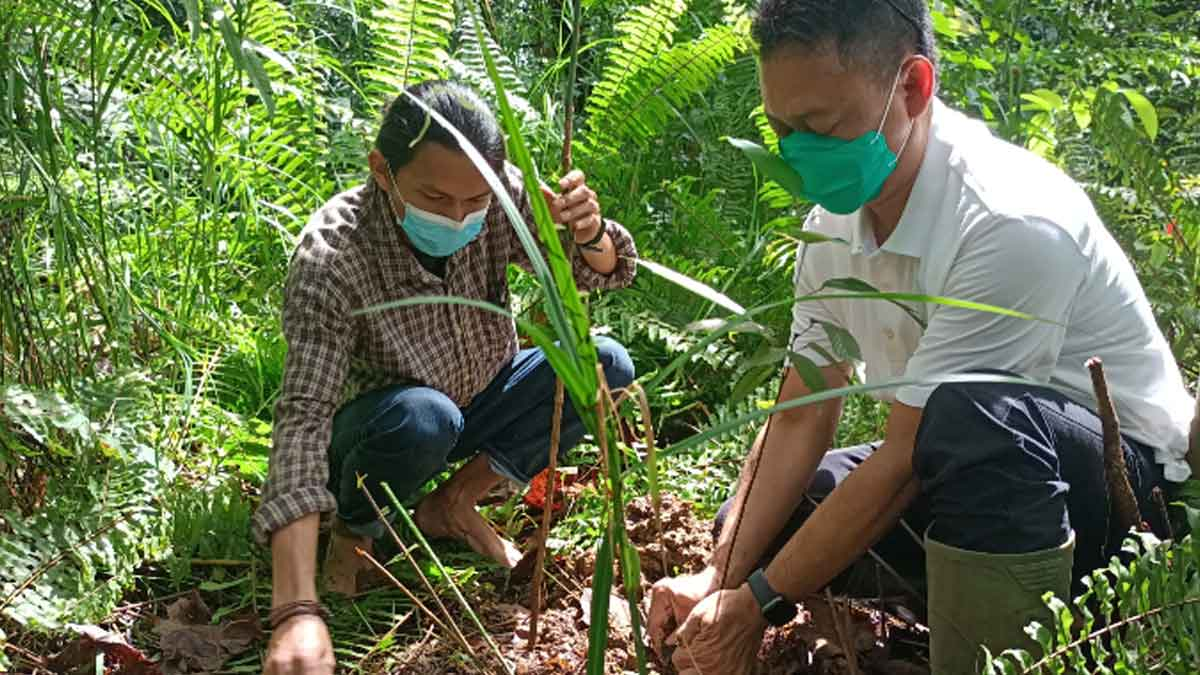 Produktif di Tengah Pandemi, Edi Ajak Warga Tanam Pohon